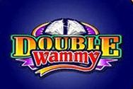 Double Wammy Microgaming