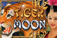 Tiger Moon Microgaming