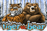 Tiger vs Bear Microgaming